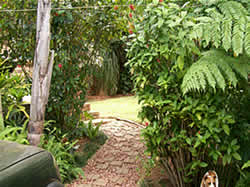 White River self catering - White River accommodation - Affordable accommodation in White River - Accommodation close to Kruger Park - Kingsview Self Catering Cottages in White River